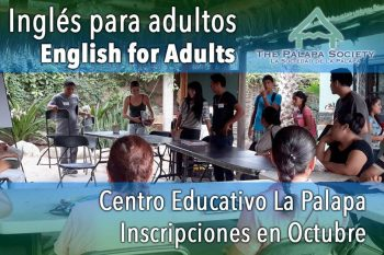 Palapa Society Adult English