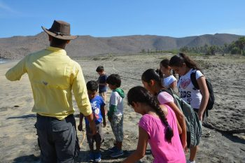 Eco Kids Palapa Summer Camp