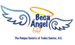 Beca Angel Scholarships logo